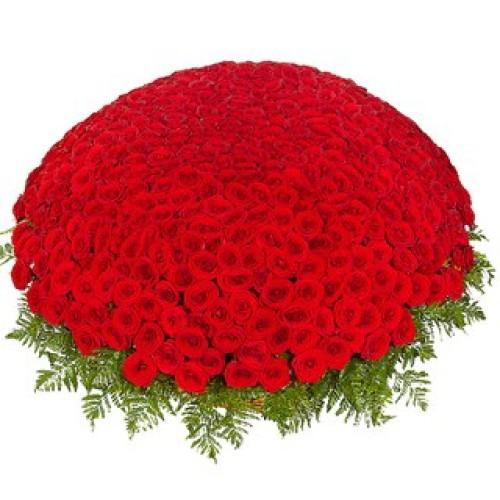 Купить на заказ 301  роза с доставкой в Лисаковске